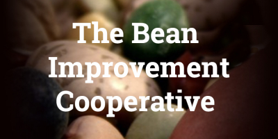 The Bean Improvement Cooperative